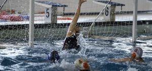 torneo_babaria_waterpolo_2019_02-960x450